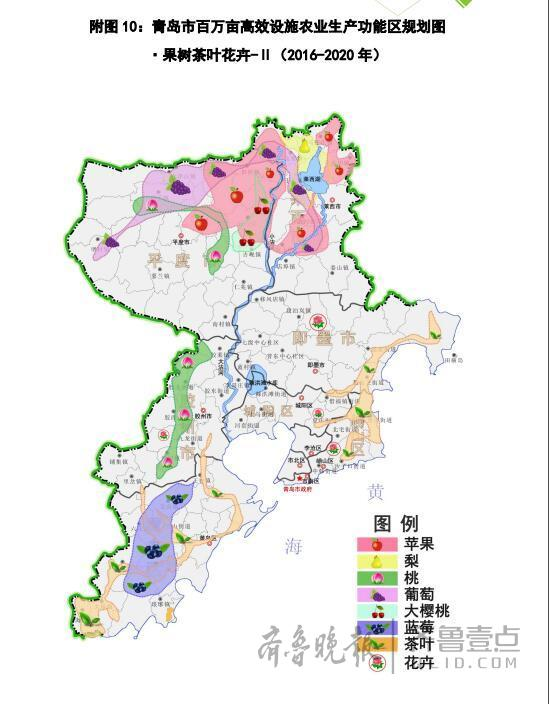 以大沽河为轴,青岛布局都市现代农业产业