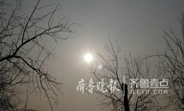 (齐鲁晚报·齐鲁壹点记者周青先/摄)