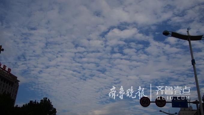 8月13日下午,济南天空出现了非常漂亮的云景,蓝天为幕,一片片白云如同瓦片排列有序,就是人们常说的瓦片云。与此同时,前几天让人非常烦躁的炎热无踪,阵阵凉爽的秋风吹过来,非常适合出来走走  。 齐鲁晚报·齐鲁壹点记者周青先摄 编辑:阿哲