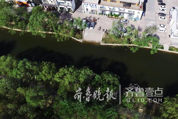 南段水系从减河大道由南向北至新河路改造长度约2.1公里,北段水系从艾家沟以北到广达路北侧改造长约1.8公里。(沙王河中段景观)